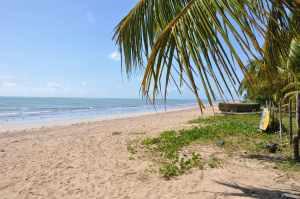 Praia do Bitingui  - Praias-360
