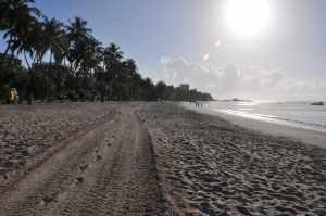 Praia dos Sete Coqueiros  - Praias-360