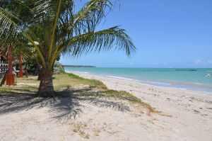 Praia de Dourado  - Praias-360