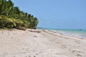 Praia de Xaréu  - Praias-360