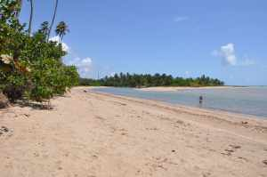 Praia do Camacho  - Praias-360