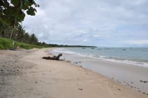 Praia dos Pescadores  - Praias-360