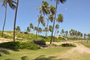 Praia de Massarandupió  - Praias-360