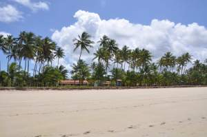 Praia de Bainema  - Praias-360