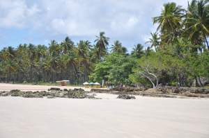 Praia de Tassimirim - Praias-360