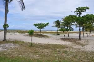 Praia da Avenida  - Praias-360