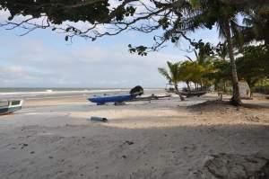 Praia Mamoã  - Praias-360