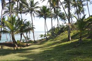 Praia do Havaizinho  - Praias-360