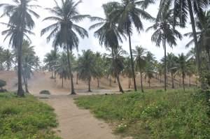 Praia de Santo Antônio  - Praias-360