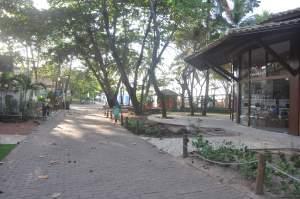 Praia do Forte  - Praias-360