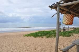 Praia da Jacutinga  - Praias-360