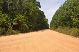 Praia do Coqueiro  - Praias-360
