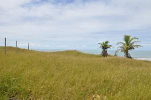 Praia Enseada das Gaivotas  - Praias-360