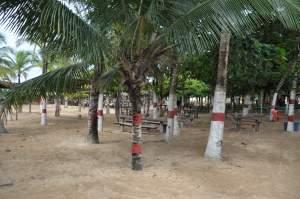 Praia do Lugar Comum - Praias-360