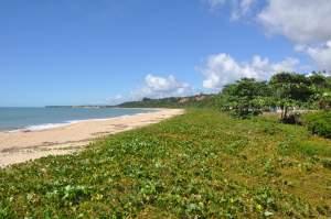 Praia de Curuípe  - Praias-360