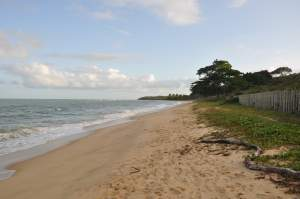 Praia de Itapororoca  - Praias-360