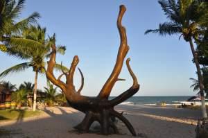 Praia do Guaibim  - Praias-360