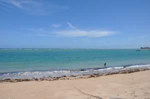 Praia Enseada do Araua  - Praias-360