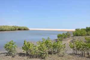 Praia da Barra do Rio Curu - Praias-360