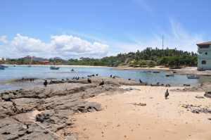 Praia do Urubu - Praias-360