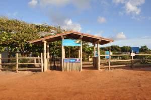 Praia do Projeto Tamar  - Praias-360