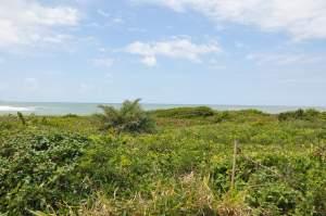 Praia de Jacarenema  - Praias-360