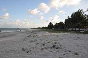 Praia de Camboinhas - Praias-360