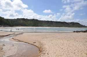 Praia de Coqueirinho  - Praias-360