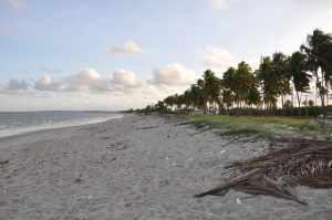Praia de Acaú