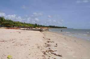 Praia de Mangue Seco  - Praias-360