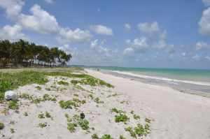 Praia Pontal do Jaguaribe  - Praias-360