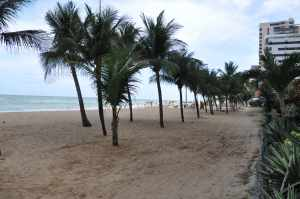 Praia da Piedade - Praias-360