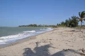 Praia de Barrinha - Praias-360