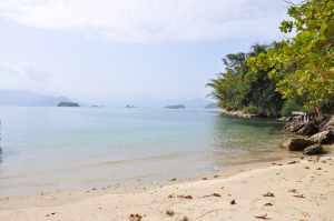 Praia das Pintangueiras  - Praias-360
