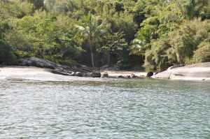 Praia de Aripeba  - Praias-360