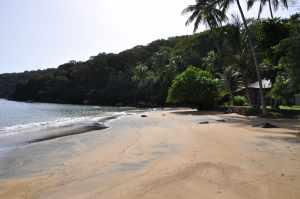 Praia do Bananal Pequeno - Praias-360