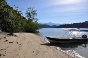 Praia da Cotia