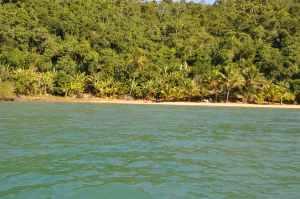 Praia do Bananal  - Praias-360