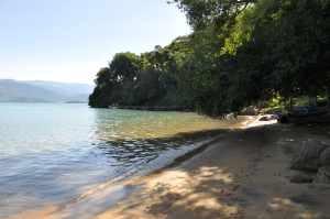 Praia do Engenho - Praias-360