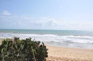 Praia de Ponta Negra - Praias-360