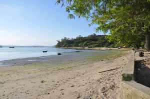 Praia da Armação do Itapocorói   - Praias-360