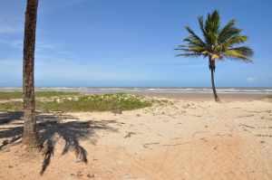 Praia do Mosqueiro  - Praias-360