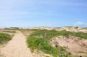 Praia de Atalaia Nova  - Praias-360