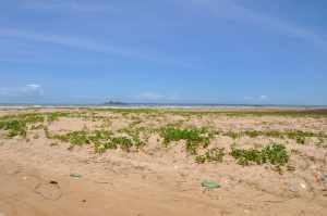 Praia de Jatobá   - Praias-360