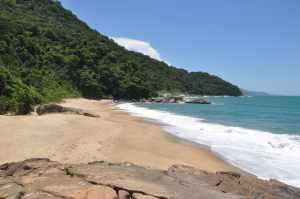 Praia Brava - Praias-360