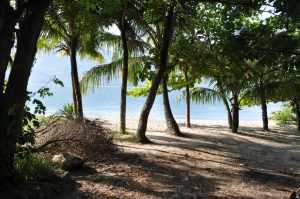Praia das Pitangueiras - Praias-360