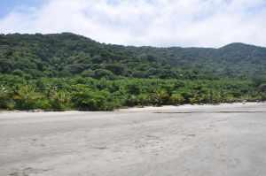 Praia Preta 3  - Praias-360