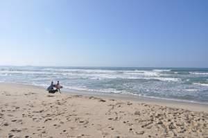 Praia de Itamambuca  - Praias-360