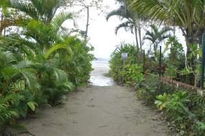 Praia Dura  - Praias-360