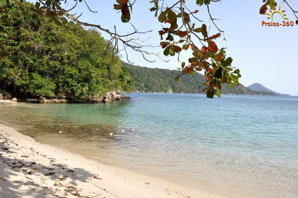 Praia De Grumixama - Ilha Grande